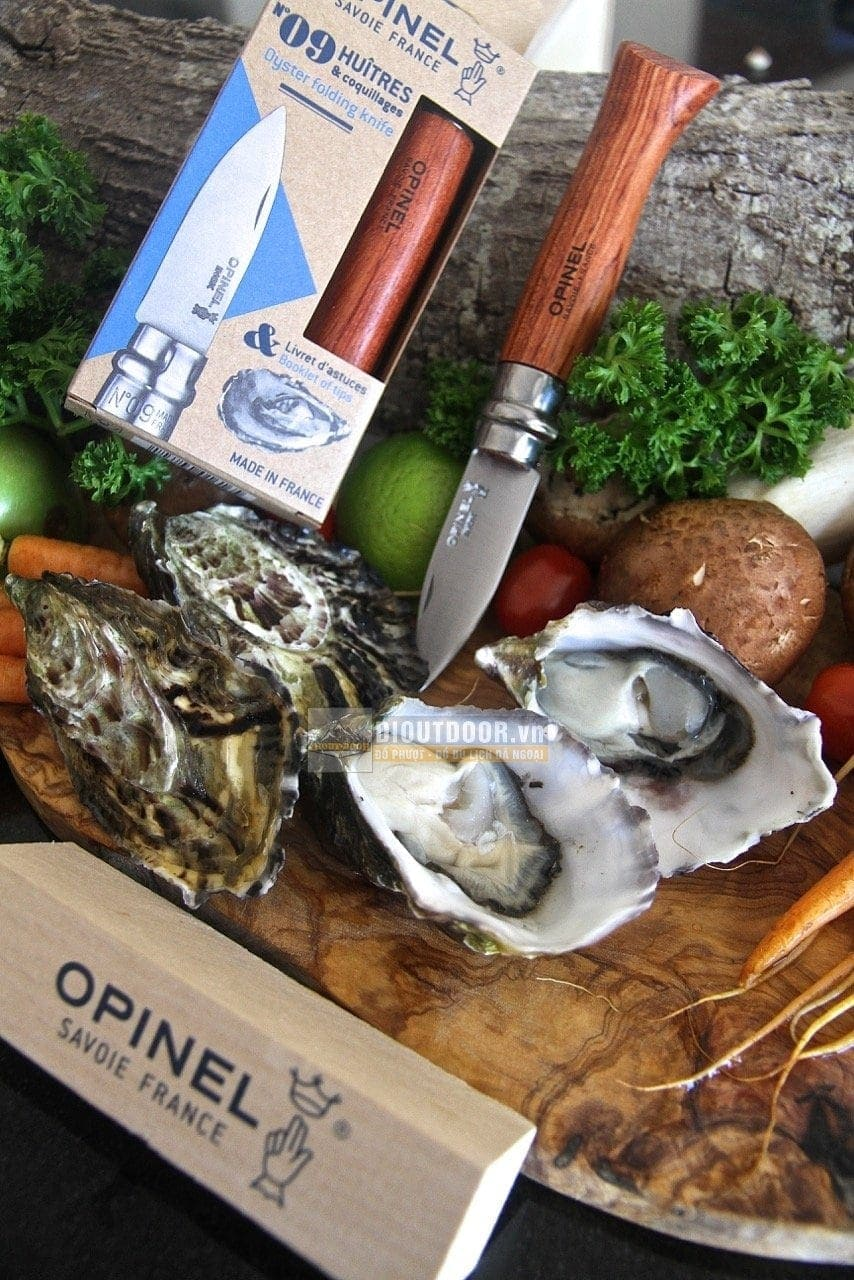 Dao Opinel No9 Oyster & Shellfish Folding Knife